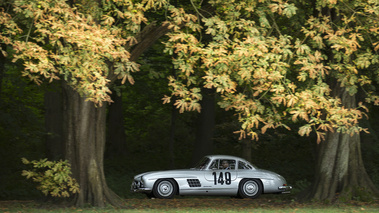 Chantilly Arts & Elégance 2016 - Mercedes 300 SL gris filé