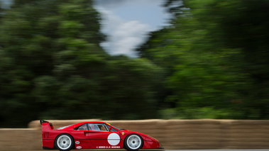 Goodwood Festival of Speed 2017 - Ferrari F40 LM rouge filé